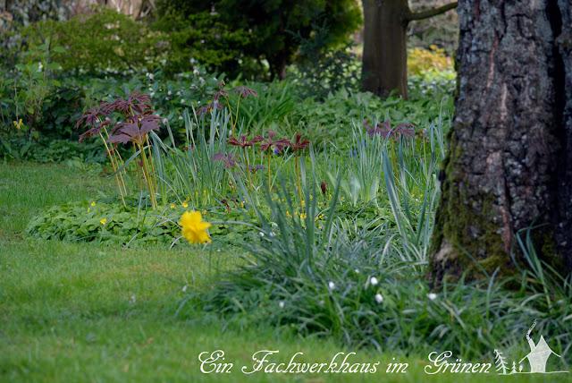 Garten im AprilApril