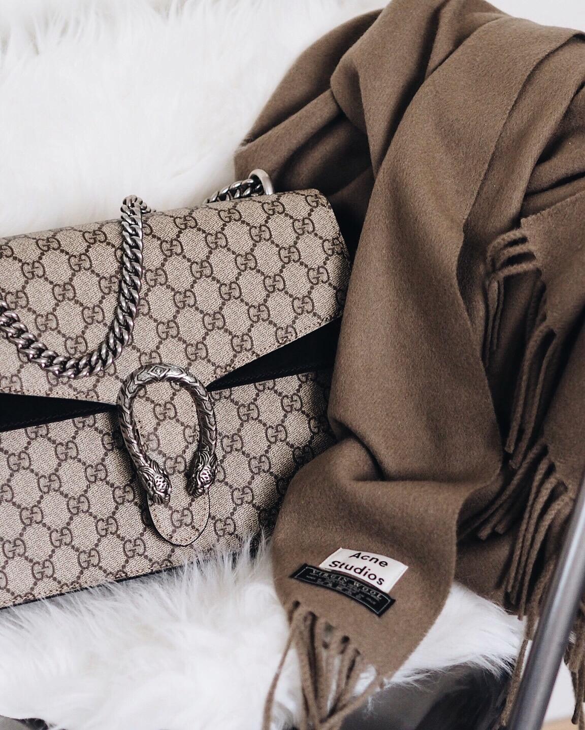 f4cd07057142 Bag Talk  Gucci Dionysus (Review) - missjesf.