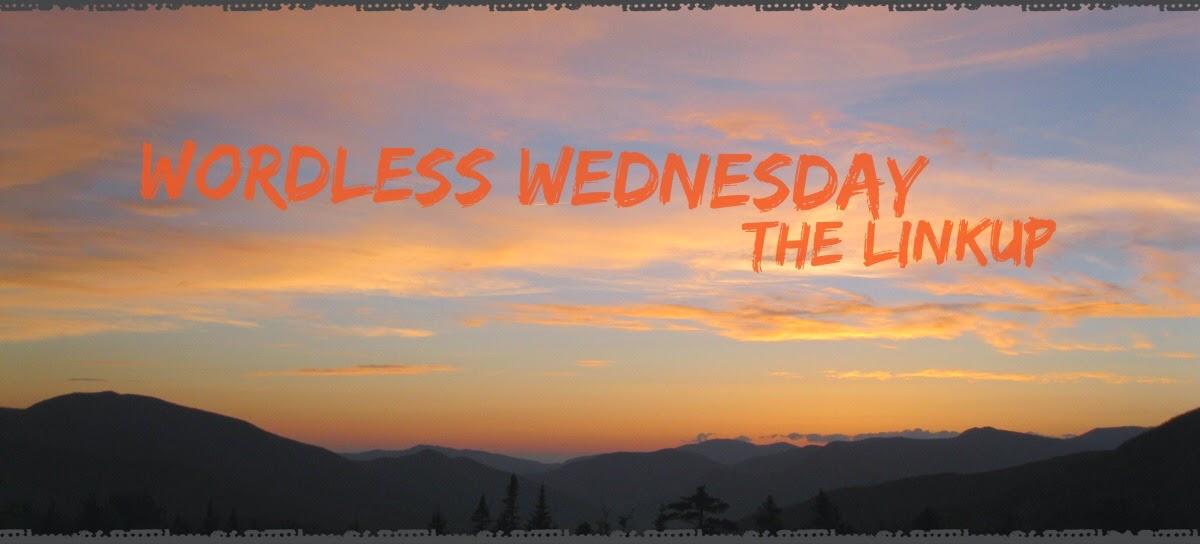 Wordless Wednesday linkup badge