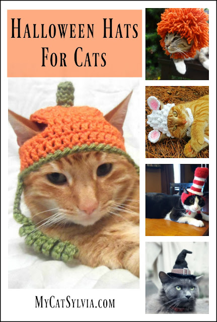 Halloween Hats for Cats presented by MyCatSylvia.com