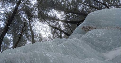 Ice fall beneath hemlock trees