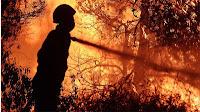 Οι πύρινες φλόγες για μια ακόμη χρονιά στο καταστροφικό τους έργο