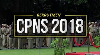 Enam Jalur Khusus Bagi Pelamar CPNS 2018 yang Mendapatkan Keistimewaan