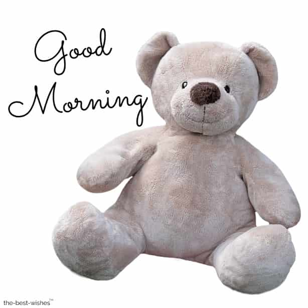 good morning sunday teddy bear images