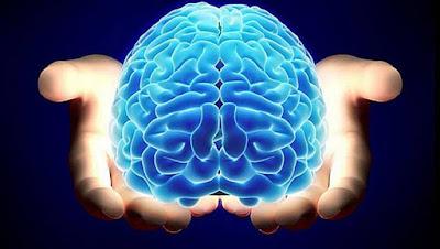 La muerte cerebral