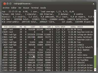 Verificar el consumo del memoria en Linux - top