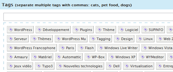 How to use wordpress tags and categories