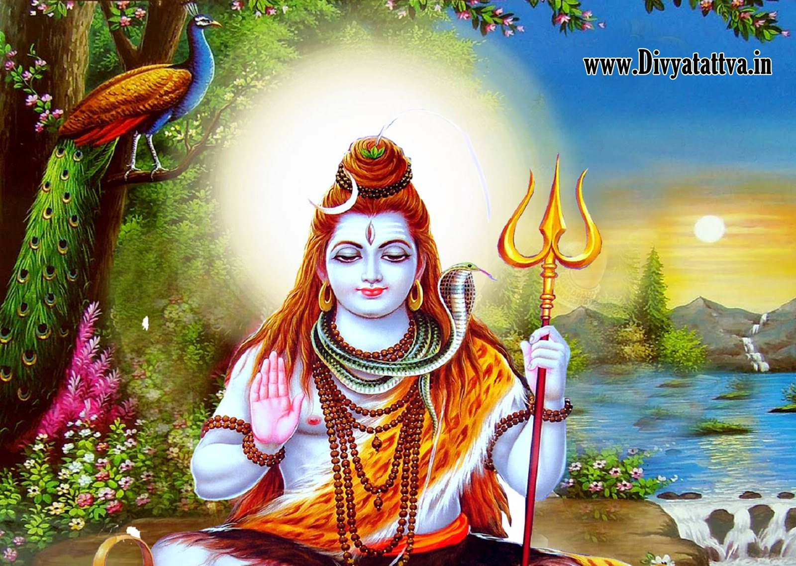 Divyatattva Astrology Free Horoscopes Psychic Tarot Yoga Tantra     Spiritual god of hindus lord shiva wallpaper  shiva parivar  sadhna samadhi lord  shiva photos