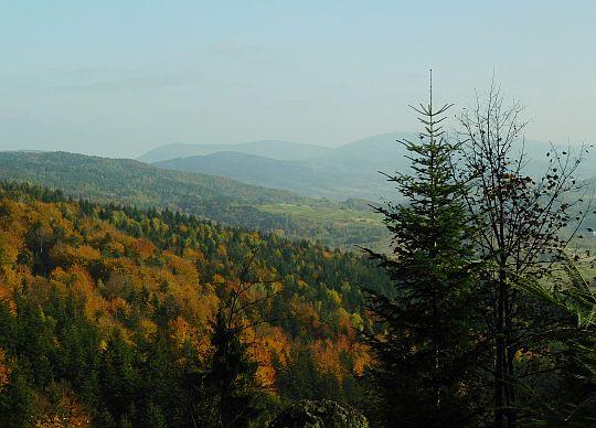 Widok ze stoków Trzebuńskiej Góry.