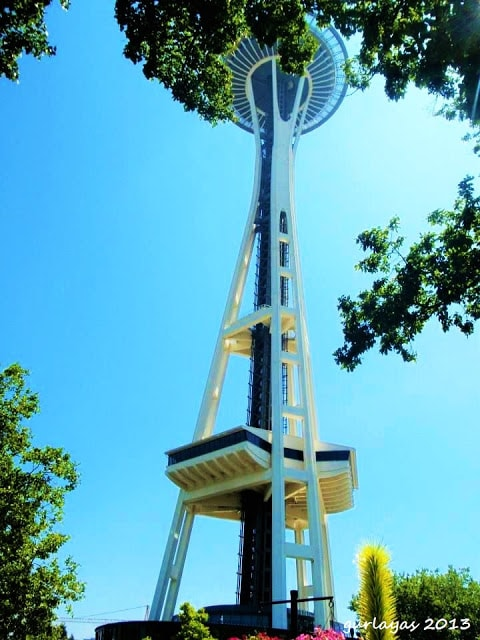 Space Needle framed by trees by gurlayas.blogspot.com