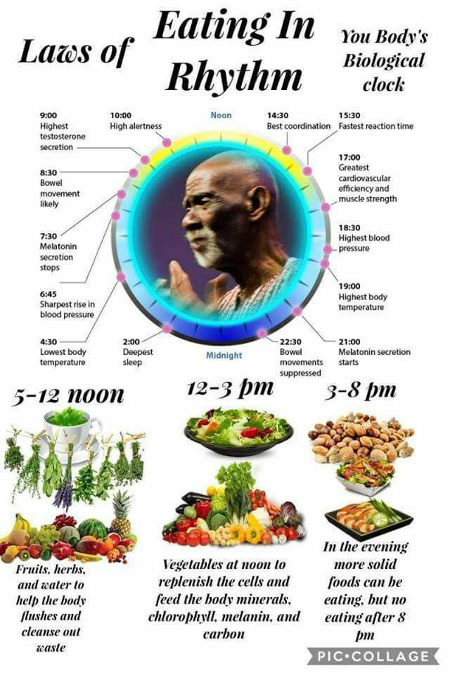 AMEN PAR ANKH Sacred Temple of Life: ELECTRIC FOODS- How Can