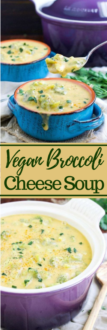 VEGAN BROCCOLI CHEESE SOUP RECIPE #veganrecipe #soups