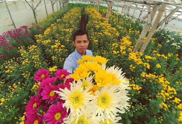 taman bunga di bandungan semarang