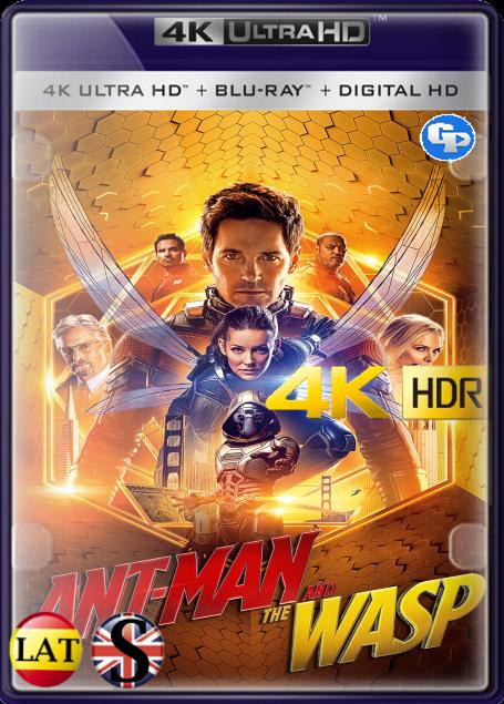 Ant-Man y la Avispa (2018) 4K HDR LATINO/INGLES