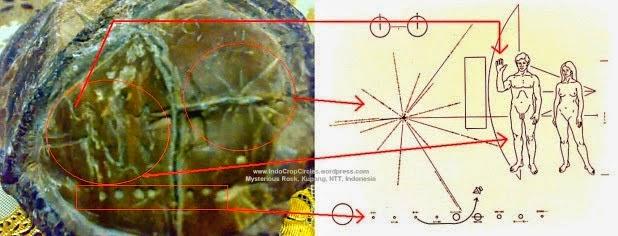Ο «εξωγήινος» βράχος της Ινδονησίας