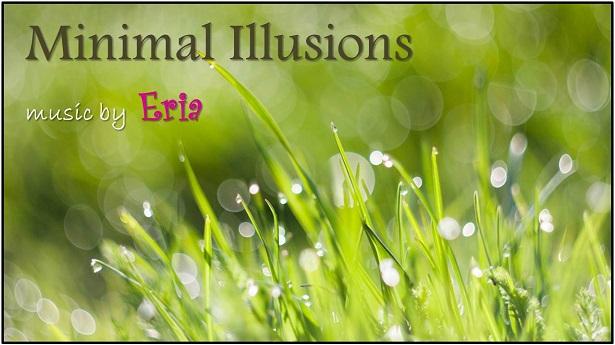 Minimal Illusions
