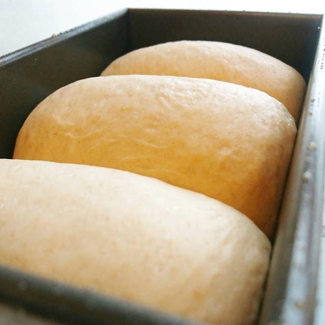 等麵糰長高高到大約模具的八、九滿時,就發酵完成可以進烤箱囉