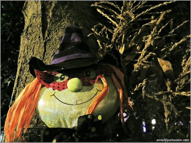 Salem en Halloween: La Ciudad de las Brujas