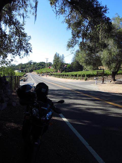 Aprilia Tuono Napa Valley