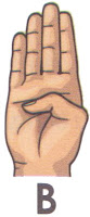 Bahasa Isyarat B