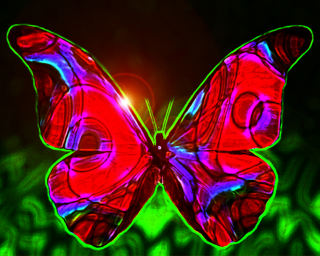 Funny Image Collection: Butterfly wallpaper for home!  Funny Image Col...