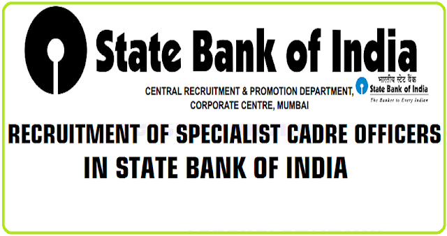 SBI,Specialist cadre officers,Recruitment|Apply online@ibps.sifyitest.com