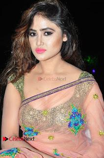 Actress Sony Charishta Stills in Saree at 9th Edition Epicurus Indian Hospitality Awards  0024