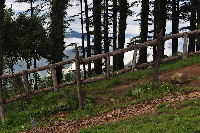 eco park dhanolti