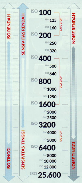 Memahami Skala ISO
