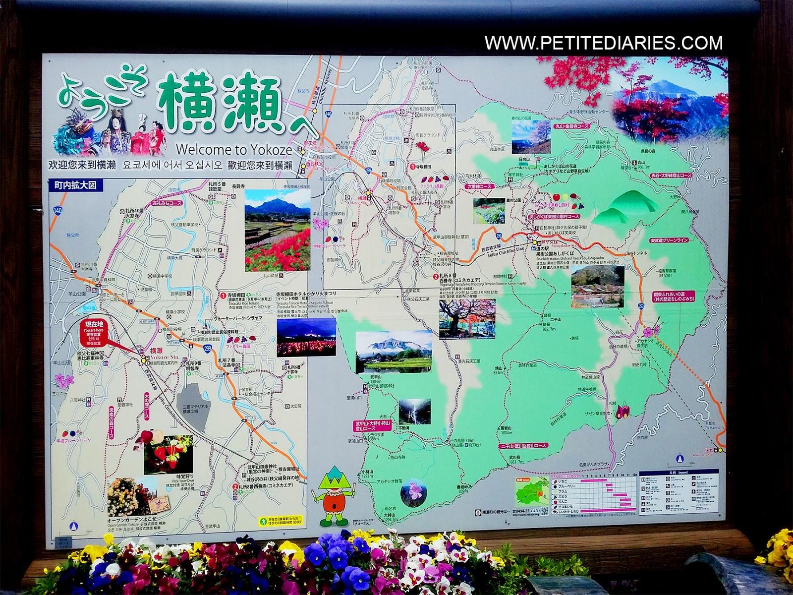 yokoze chichibu saitama map for shibazakura