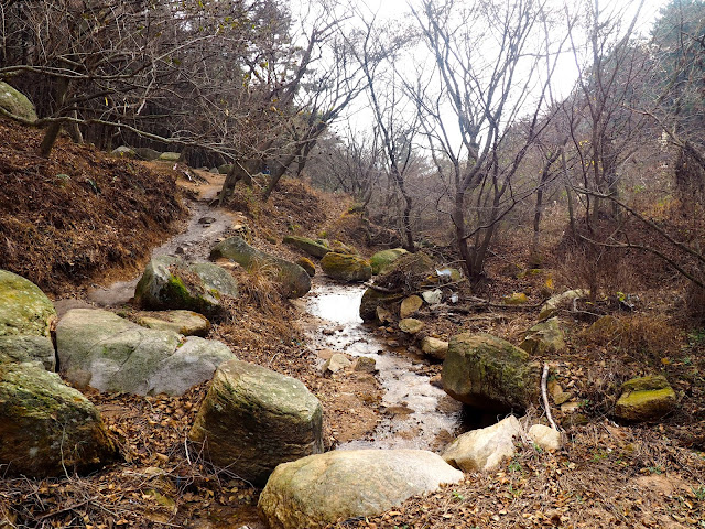 Stream in the forest in autumn on the hiking trail on Geumjeongsan Mountain, Busan, South Korea