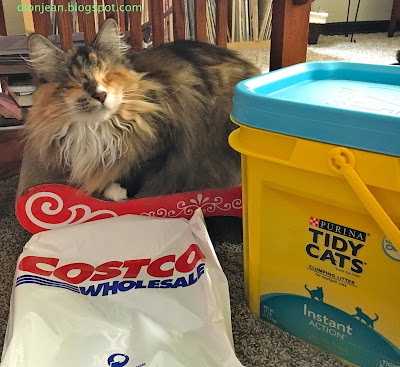 Lucy with her cat litter and Costco bag