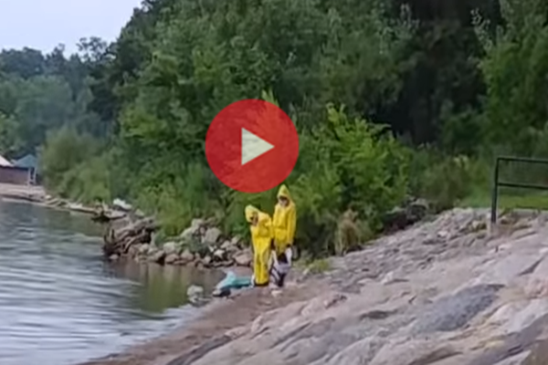 Сензационно видео с операция по залавянето на русалка в Минесота взриви интернет мрежата (ВИДЕО)