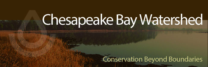 the importance of agricultural management in the chesapeake bay area Agricultural lands account for approximately 22% of the chesapeake  in the  tidal areas of the chesapeake bay, improvements in do and underwater   implementing the best management practices (bmps) called for in the.