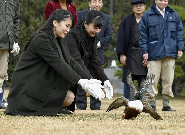 The Imperial Household Agency currently has got two Imperial Wild Duck Preserves, the Saitama Imperial Wild Duck Preserve