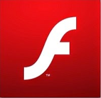 "Flash Player is a common browser plug-in for rich content, but is also a common method of ""drive-by"" infection. Here are some security tips."