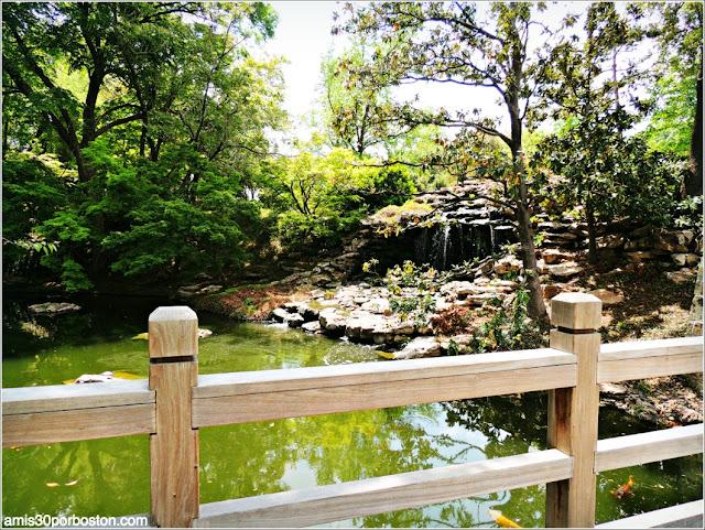 Vista de la Cascada desde el Mikoshi Deck en el Fort Worth Japanese Garden