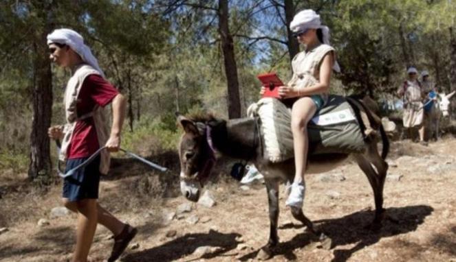 Keledai Dijadikan Wifi Berjalan di Israel