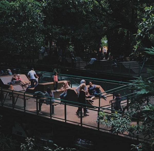 wisata forest walk babakan siliwangi bandung