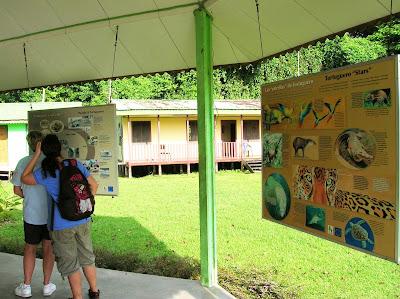 Parque Nacional Tortuguero, Costa Rica, vuelta al mundo, round the world, La vuelta al mundo de Asun y Ricardo, mundoporlibre.com