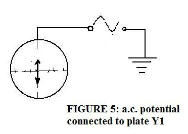 Brane Space: Introduction to Basic Physics (the