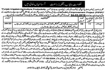 Agriculture Department Government Of Punjab New Jobs 2019 - Job collects