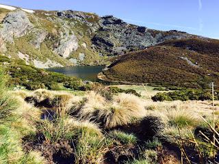Carrera Montaña Truchillas Vizcodillo 2019