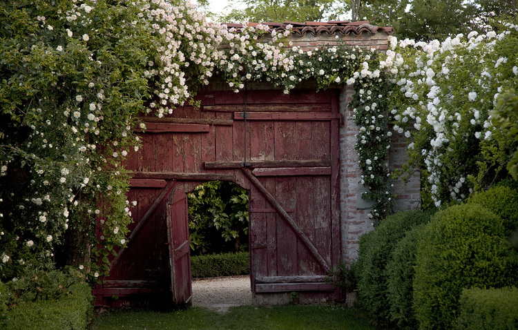 Rustic red wood gate on farm in Itally