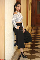 Manjusha in sleevelss crop top and black skirt at Darshakudu pre release ~  Exclusive Celebrities Galleries 036.JPG