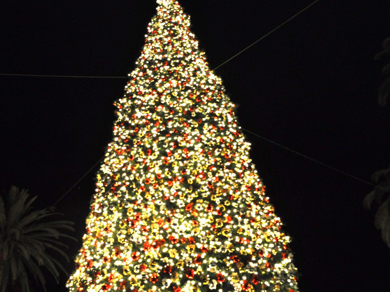 Ανάβουν τα φώτα στο Χριστουγεννιάτικο δένδρο στον Περα Μαχαλά στη Λάρισα