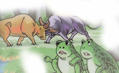 cerita banteng yang berkelahi dan katak rawa-rawa