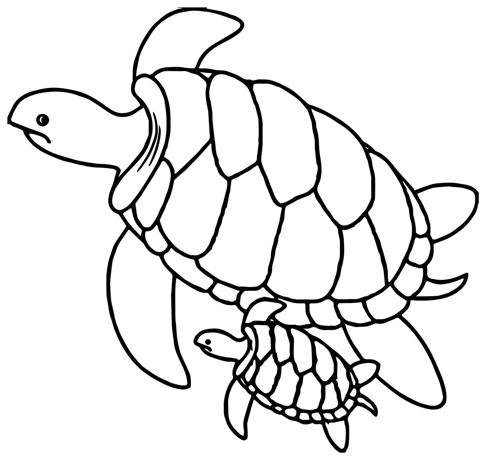 Tranh cho bé tô màu hai mẹ con rùa