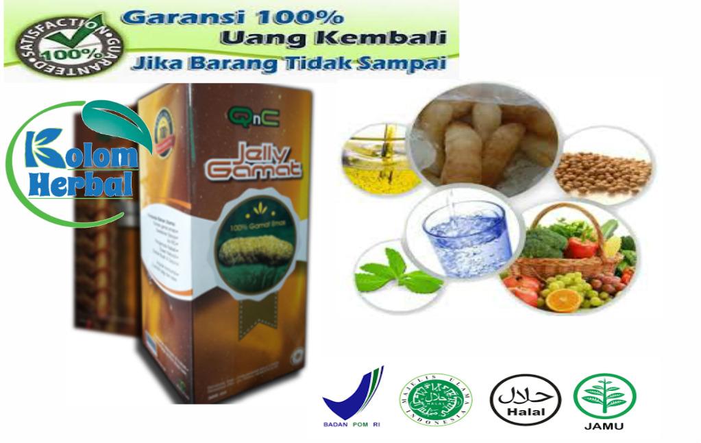 Penjual QnC Jelly Gamat Di Banjar