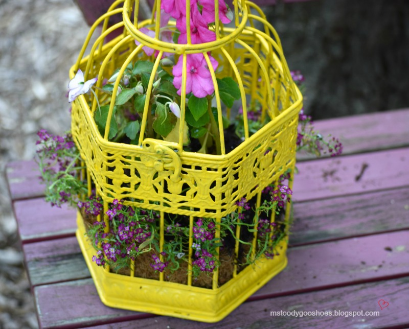 Make a Birdcage Planter -- It's so easy! | Ms. Toody Goo Shoes